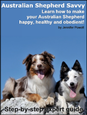 australian-shepherd-ebook